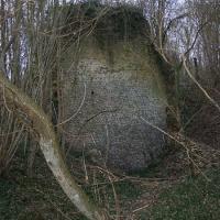 Vestiges de la tour du château à Vaudeurs